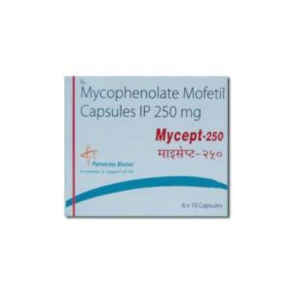 Generic CellCept 250 mg Caps