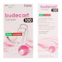 Front and backside of Budesonide 100mcg Inhaler Box pack